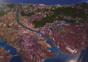 turkey-Image-6-28-21-at-3.30-PM.jpg