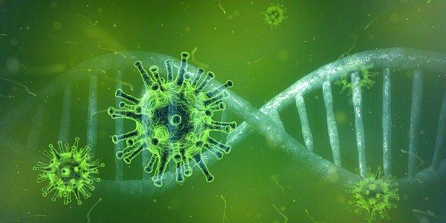 Coronavirus 4833754 640