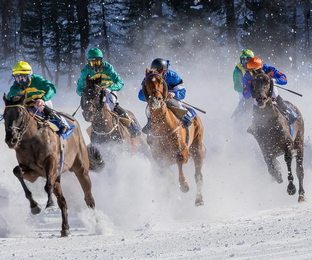 Horse racing 4018609 1920