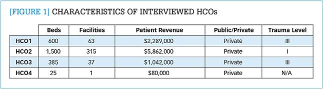 Characteristics of interviewed HCOs