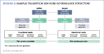 [Figure 2] Sample transition services governance structure