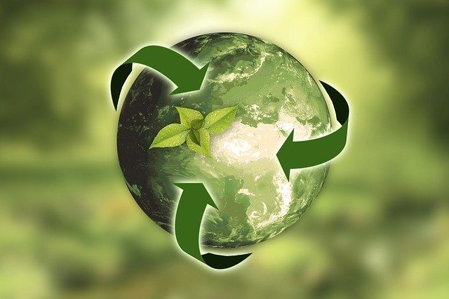 Shippers more focused on sustainability, study shows